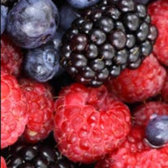 cropped-cropped-background-berries-berry-blackberries-87818