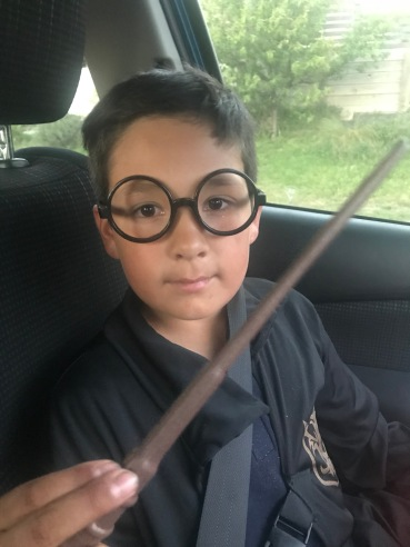 mr harry potter